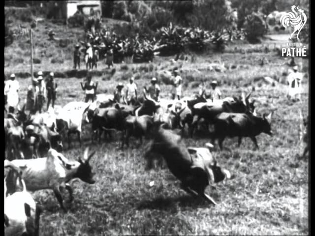 Madagascar  Aka Madagascar Street Scenes (1942)