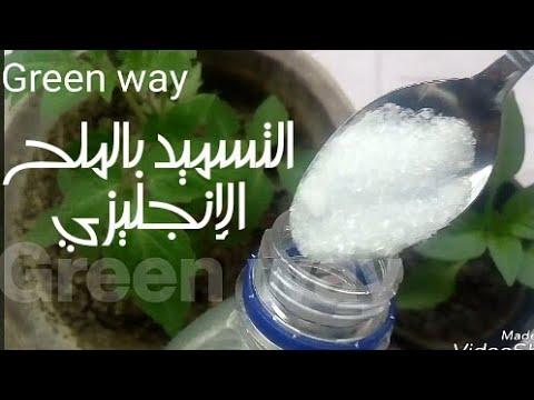 فوائد الملح الإنجليزي لنباتاتك الزراعة المنزلية Epsom Salt Youtube