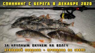 ЛОВЛЯ НА СПИННИНГ С БЕРЕГА ЗИМНЯЯ РЫБАЛКА НА ВОЛГЕ В ДЕКАБРЕ 2020 отводной поводок окунь Тольятти