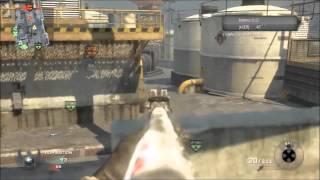 Mon Call Of Duty Parfait I en compagnie de BestOfWar07