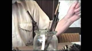 Размножение винограда черенками (чубуками)