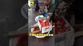 China fake food products