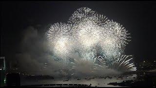 「東京花火大祭~EDOMODE~」2018 終盤で盛り上がる花火会場を横切る巨大な客船