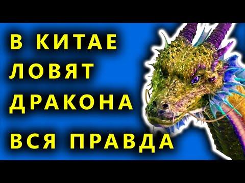 В Китае проснулся дракон, Страшные звуки в горах, Дракон в Китае - правда или очередной фейк ?