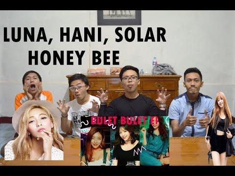 Free Download Luna, Hani, Solar - Honey Bee Mv Reaction ( Sexy Level Akut ) Indonesia Mp3 dan Mp4
