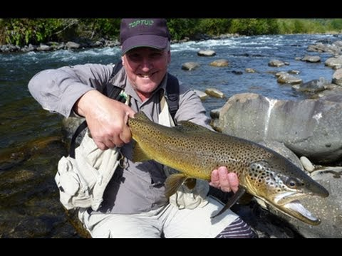 Fly fishing new zealand central north island trout youtube for Youtube trout fishing
