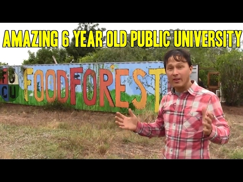 Amazing 6 Year Old Public University Permaculture Food Food Forest
