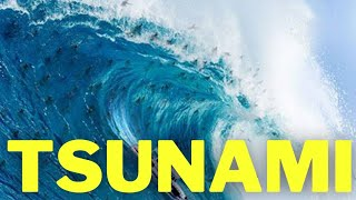 Entenda como se forma a Tsunami, a maior onda do mundo