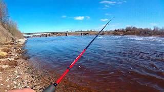 Снова на реке Рыбалка на спиннинг Отчетик