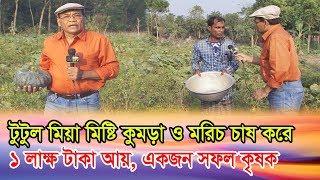 টুটুল মিয়া মিষ্টি কুমড়া ও মরিচ চাষ করে ১ লাক্ষ টাকা আয় করে| Misti Komra | Dewan Siraj |Mati O Manush