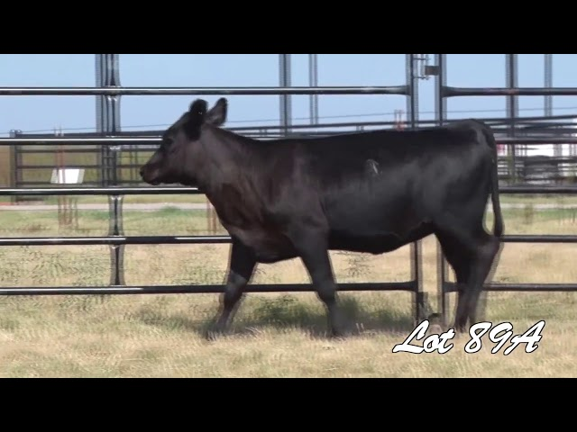 Pollard Farms Lot 89A