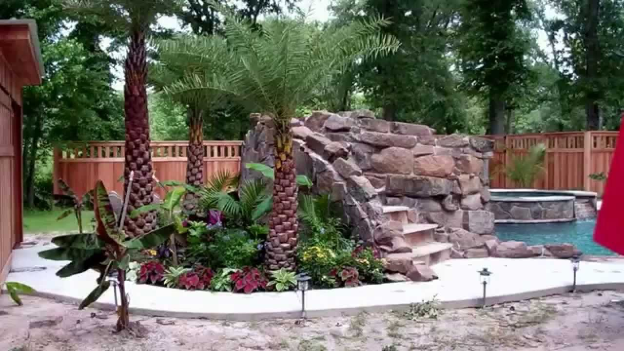Palm Tree Landscaping Pool Landscaping Lake Conroe Katy