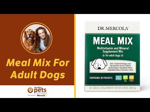 Meal Mix For Adult Dogs