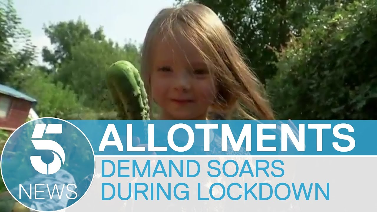 Demand for allotments soars during pandemic as more seek outdoor hobbies  | 5 News