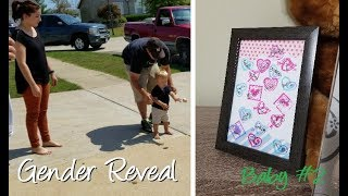 Baby #2 Sex Gender Reveal with Big Brother and Family