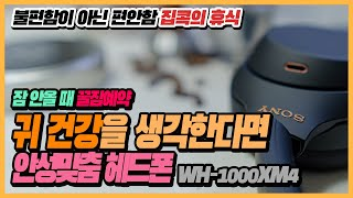 [리뷰] 소니 노이즈…