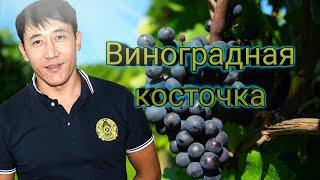 Смотреть клип Азамат Исенгазин - Виноградная Косточка
