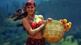 Rakshakudu Songs - Chanduruni Takinadi - Nagarjuna, Sushmita Sen
