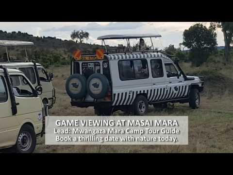 Tourists at Maasai Mara Nat'l Reserve