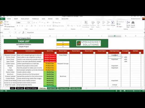 Project Programme Manager Demo Video