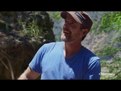 Огромная цепь | В поисках сокровищ: змеиный остров | Discovery Channel