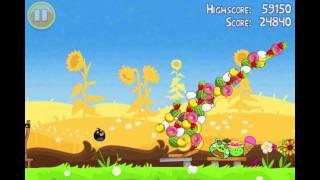 "Angry Birds Seasons Summer Pignic Golden Egg #20 Walkthrough ""Big Basket"""