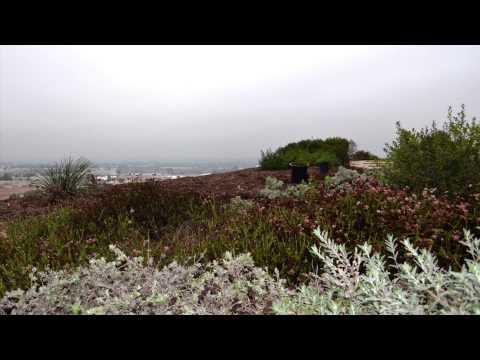 LMU: The Tongva Memorial