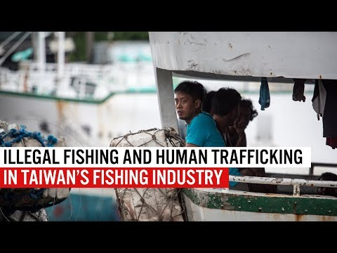 Illegal Fishing And Human Trafficking In Taiwan's Fishing Industry