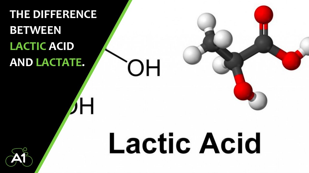 global and china lactic acid and Summary global lactic acid and polylactic acid (pla) market research report provides the newest industry data and industry future trends, allowing you to identify the products and end users driving revenue growth and profitability.