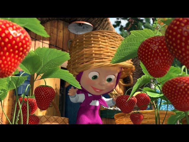Cô bé masha và chú g?u xi?c | Cô bé siêu qu?y và chú g?u xi?c | Masha tr?ng hoa qu? trong v??n