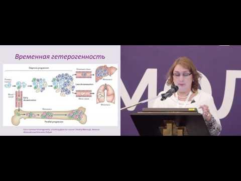 Гетерогенность рака молочной железы. Проблемы диагностики и выбора тактики лечения