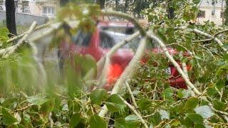 Ураган в г.Вологда 22.08.2014