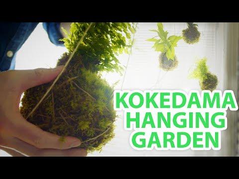 DIY Kokedama String Garden- HGTV Handmade