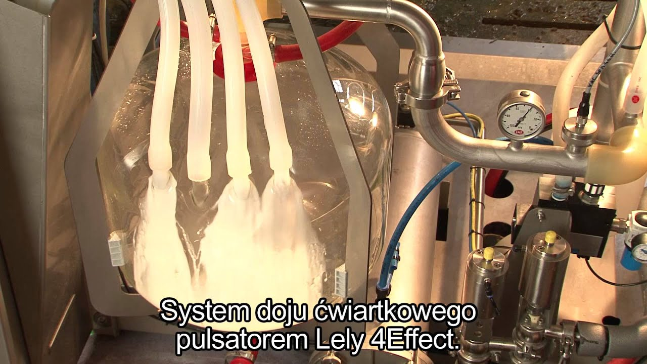 Lely Astronaut A4 - Product development (Polish)