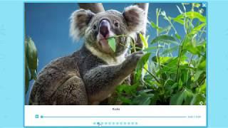 Zwierzęta Australii - multibook kl 2