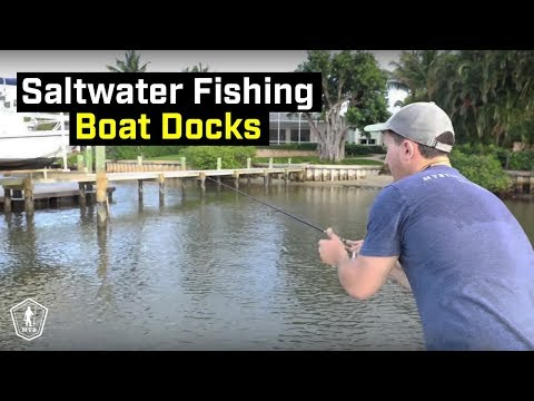 Inshore Saltwater Fishing Tips For Multiple Species!