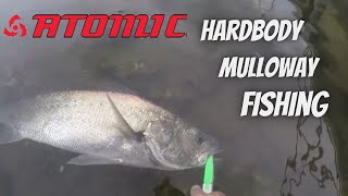 i saw a MULLOWAY eat my LURE ! ! ! ! !