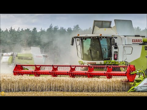 Getreideernte 2019 XXL 3 X Mähdrescher - CLAAS LEXION 740 & CASE IH 8120  Harvest In Germany