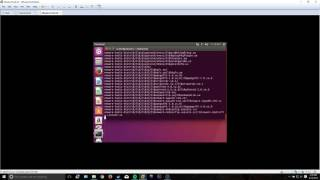 Installing VMWare Tools on Ubuntu Desktop (16.04)