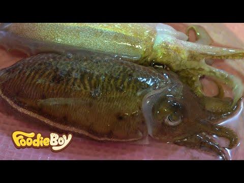마산 어시장 / 갑오징어 회(Cuttlefish Sashimi) / Korean Street Food / Masan Fish Market, Masan Korea