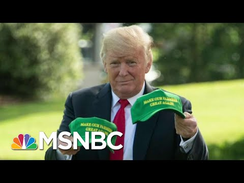 Chris Hayes On Trump's 'Massive Payout' To Farmers And The Hypocrisy Of The GOP   All In   MSNBC