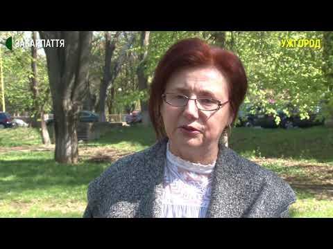Понад 113 мільйонів виділили Закарпатській області з державного бюджету для боротьби з короновірусом