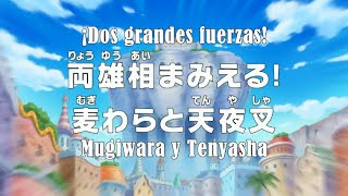 Video One Piece 662 Full English sub HD download MP3, 3GP, MP4, WEBM, AVI, FLV Agustus 2018