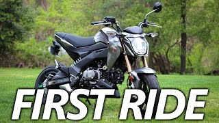 Kawasaki Z125 Pro First Ride | Is the Honda Grom Better?