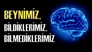 Nöropsikolojiye Giriş-3:  Beynimiz