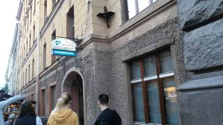Кошка Василиса  на Малой Садовой