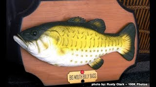 Big Mouth Billy Bass Fish Beatdown - Preston & Steve's Daily Rush