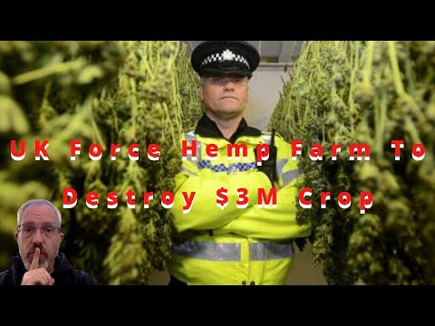UK Hemp Farm Forced To Destroy $3M Crop