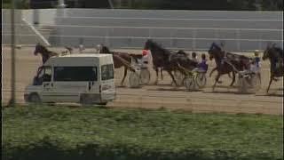 Vidéo de la course PMU PRIX LICOS DU COURTILLE