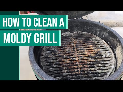 How to Clean Mold in Big Green Egg